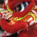 Traditional Chinese Lion Dance