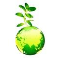 Wai Yee hong is Going Green