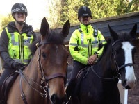 © AS Police Horses