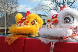 Chinese Lion Dance Costumes
