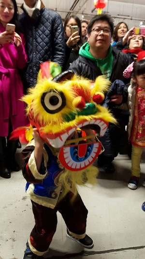 Mini Lion Dance