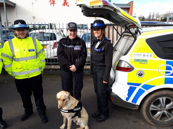 Avon & Somerset Police Dog and Handler